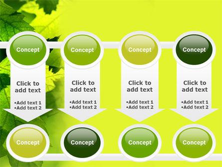 Maple PowerPoint Template Slide 18
