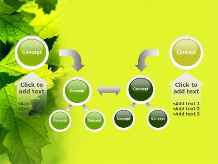 Maple PowerPoint Template Slide 19