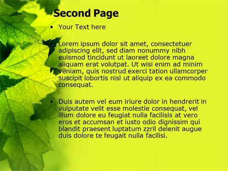Maple PowerPoint Template, Slide 2, 05314, Nature & Environment — PoweredTemplate.com