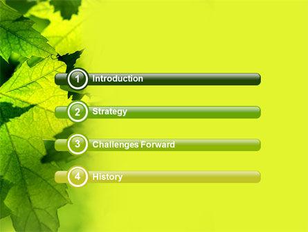 Maple PowerPoint Template, Slide 3, 05314, Nature & Environment — PoweredTemplate.com