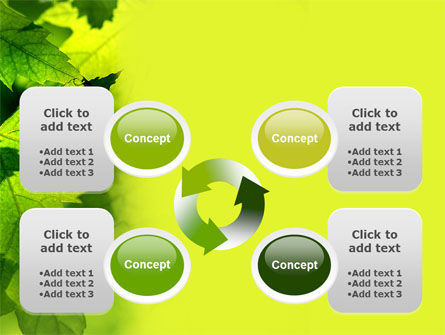Maple PowerPoint Template Slide 9