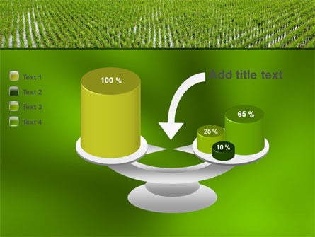 Rice Paddies PowerPoint Template Slide 10