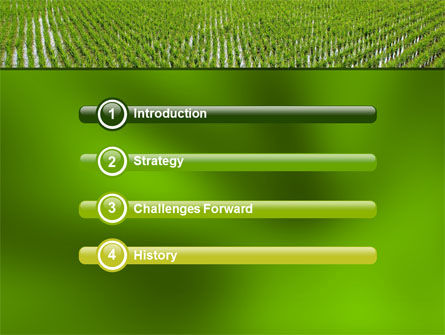 Rice Paddies PowerPoint Template Slide 3
