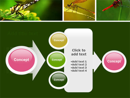 Darning-Needle PowerPoint Template Slide 17