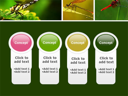 Darning-Needle PowerPoint Template Slide 5