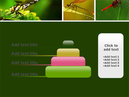 Darning-Needle PowerPoint Template Slide 8