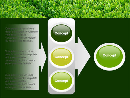 Green Grass PowerPoint Template Slide 11