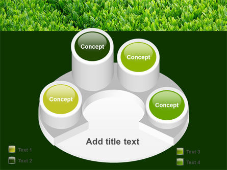 Green Grass PowerPoint Template Slide 12