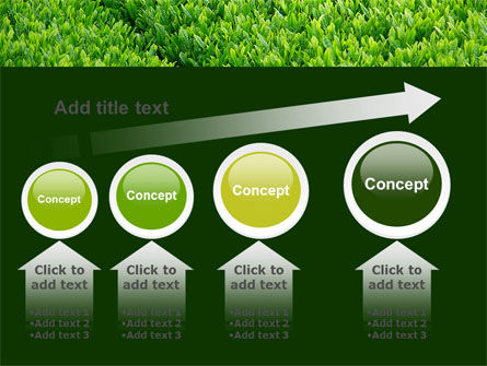 Green Grass PowerPoint Template Slide 13