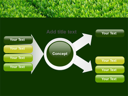 Green Grass PowerPoint Template Slide 14