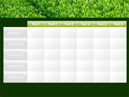 Green Grass PowerPoint Template Slide 15