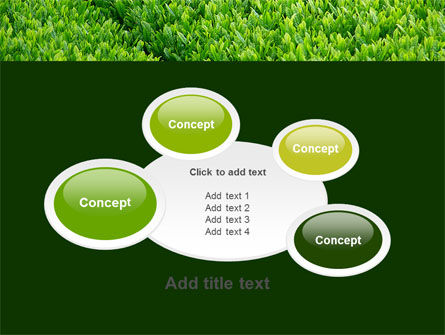 Green Grass PowerPoint Template Slide 16