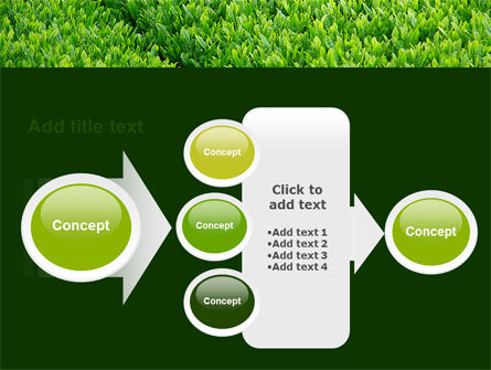 Green Grass PowerPoint Template Slide 17