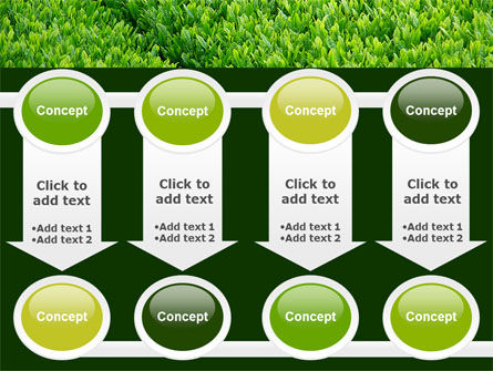 Green Grass PowerPoint Template Slide 18