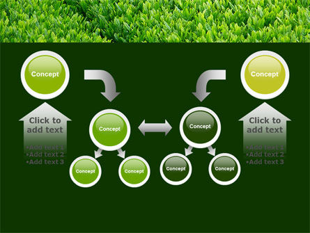 Green Grass PowerPoint Template Slide 19