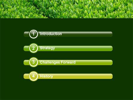 Green Grass PowerPoint Template Slide 3