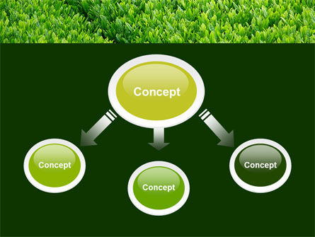 Green Grass PowerPoint Template Slide 4