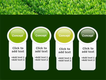 Green Grass PowerPoint Template Slide 5