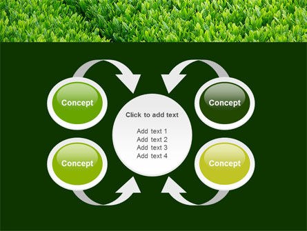Green Grass PowerPoint Template Slide 6