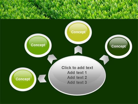 Green Grass PowerPoint Template Slide 7