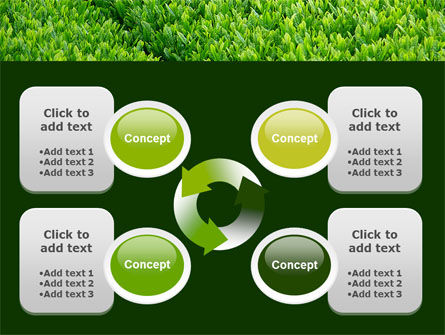 Green Grass PowerPoint Template Slide 9