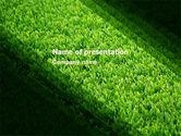 Nature & Environment: Grünes gras PowerPoint Vorlage #05336