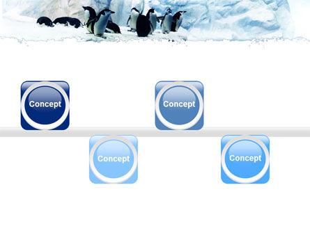 Penguins On The Iceberg PowerPoint Template Slide 19