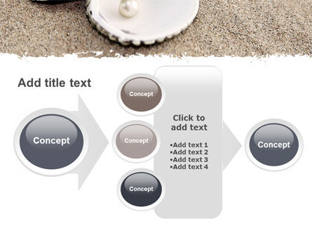 Pearl PowerPoint Template Slide 17
