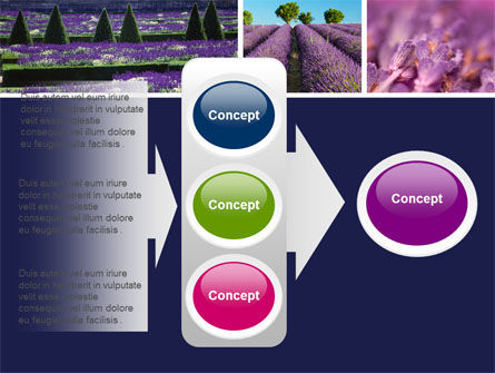 Lavender PowerPoint Template Slide 11