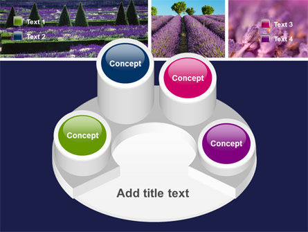 Lavender PowerPoint Template Slide 12