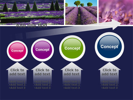Lavender PowerPoint Template Slide 13