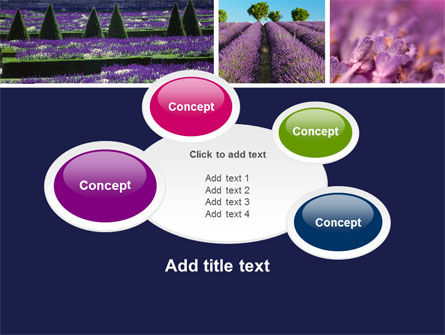Lavender PowerPoint Template Slide 16