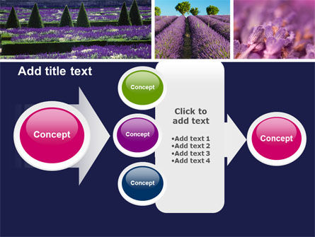 Lavender PowerPoint Template Slide 17
