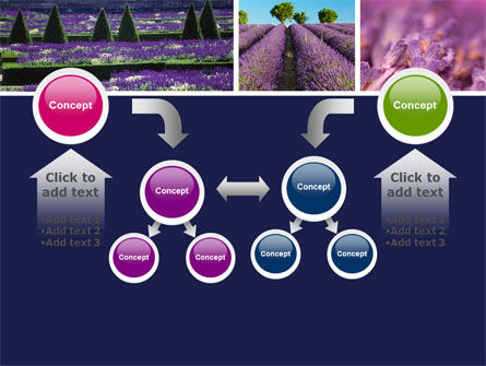 Lavender PowerPoint Template Slide 19