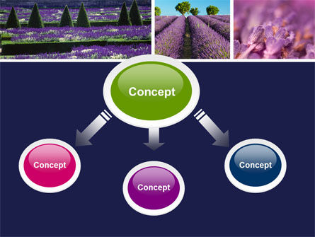 Lavender PowerPoint Template Slide 4