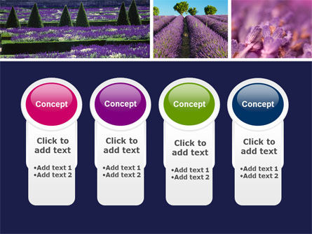 Lavender PowerPoint Template Slide 5