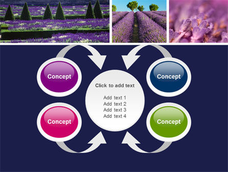 Lavender PowerPoint Template Slide 6