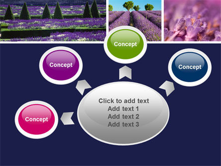 Lavender PowerPoint Template Slide 7