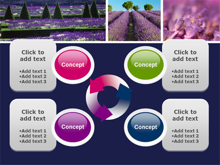 Lavender PowerPoint Template Slide 9