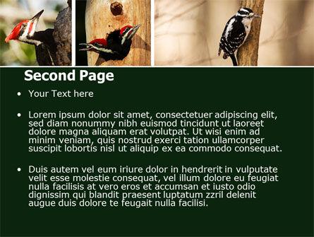 Woodpecker PowerPoint Template, Slide 2, 05405, Animals and Pets — PoweredTemplate.com