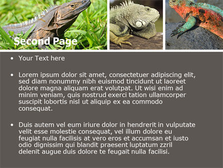 Iguana PowerPoint Template, Slide 2, 05414, Animals and Pets — PoweredTemplate.com