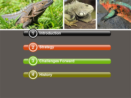 Iguana PowerPoint Template, Slide 3, 05414, Animals and Pets — PoweredTemplate.com