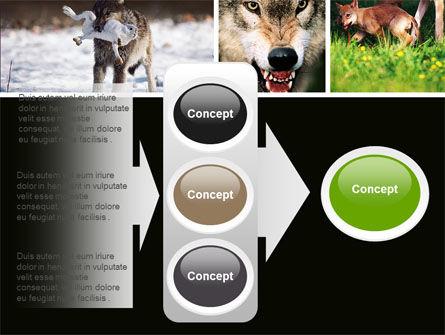 Wolf PowerPoint Template Slide 11