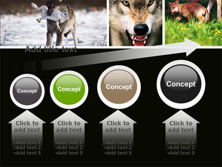 Wolf PowerPoint Template Slide 13
