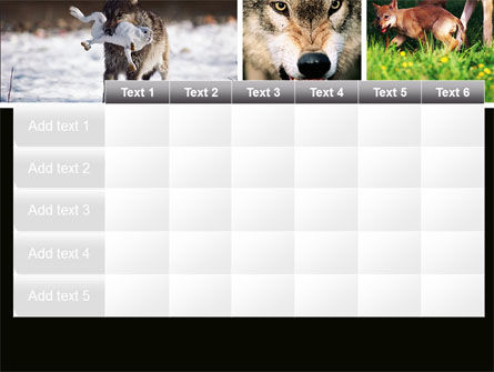 Wolf PowerPoint Template Slide 15
