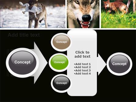 Wolf PowerPoint Template Slide 17