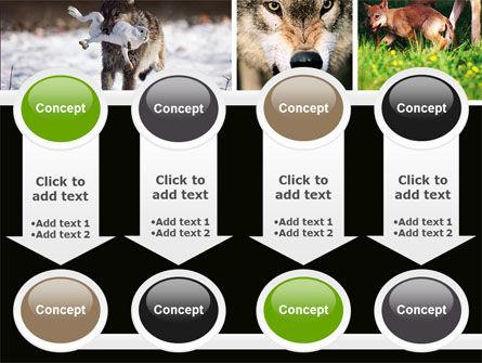 Wolf PowerPoint Template Slide 18
