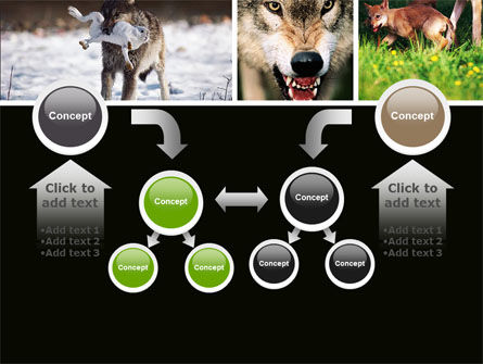 Wolf PowerPoint Template Slide 19