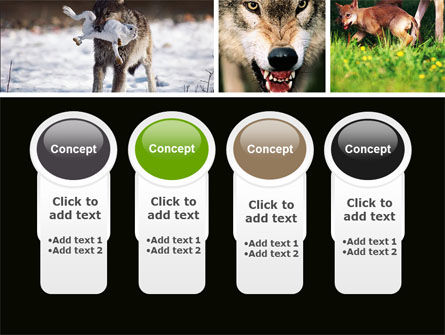 Wolf PowerPoint Template Slide 5