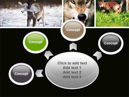 Wolf PowerPoint Template Slide 7